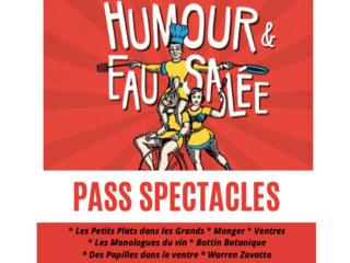 Affiche du spectacle Pass Spectacles