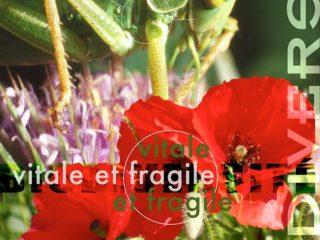 Affiche du spectacle Exposition Biodiversité, vitale et fragile
