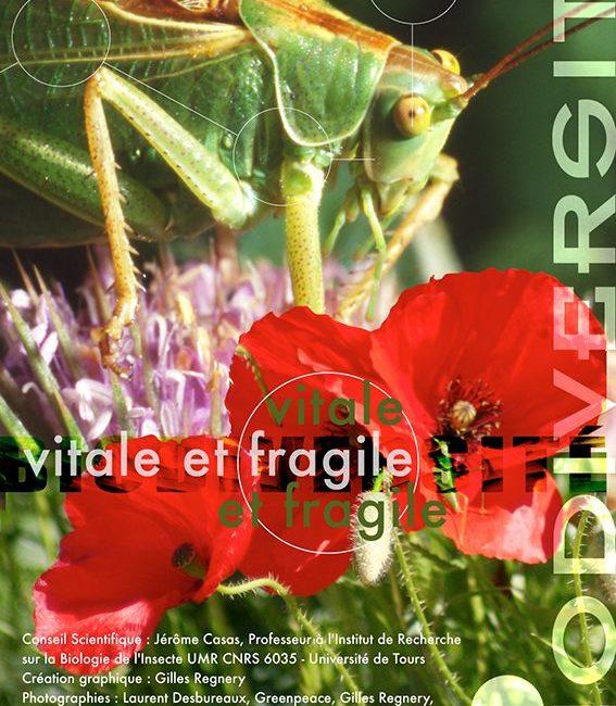 Exposition Biodiversité, vitale et fragile