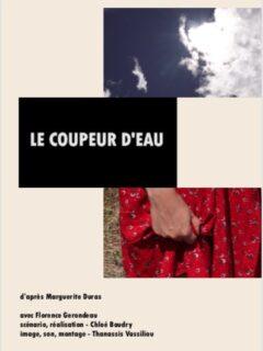 Affiche du film Le coupeur d'eau (film 1/2 séance 5 du FAANA)