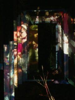 Affiche du film Travance (film 2/3 séance 2 du FAANA)